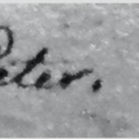 Death of Peter-Grassi Diary.pdf